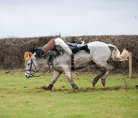 A member of the Belvoir Hunt falls after a jumping a hedge