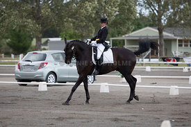 SI_Dressage_Champs_260114_003