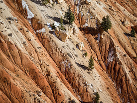 Bryce_Nation_Park_447