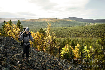 Hiker above the taiga