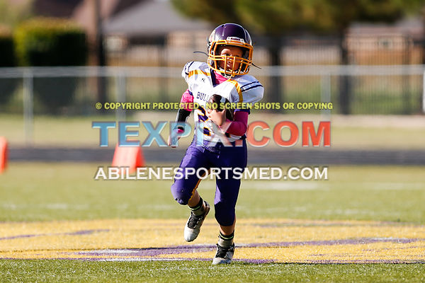 10-08-16_FB_MM_Wylie_Gold_v_Redskins-660