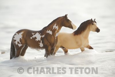 Breyer Ponies photos