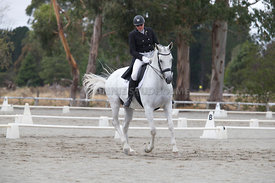 SI_Festival_of_Dressage_300115_Level_6_NCF_0187