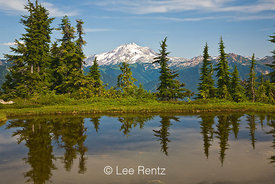 Glacier Peak viewed from a tarn in Mt. Forgotten Meadows, Mt. Baker-Snoqualmie National Forest, Cascade Mountains, Washington, USA, August, 2008_WA_4564