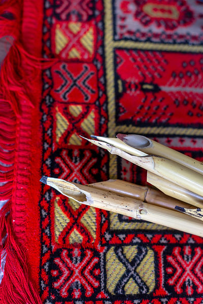 Pens used by Mohammed Ghalib, the last calligrapher in Old Delhi