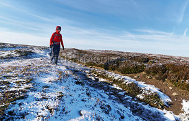 A hiker wearing a red jacket walking through a snow covered winter landscape. Edmondbyer Common, England, UK.