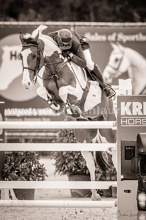 CSI3* Bonheiden - Avril 2018 photos