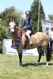 NZ_Nat_SJ_Champs_080215_SH_0468