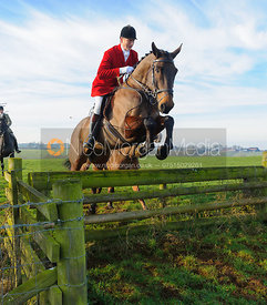 jumping a hunt jump at Stone Lodge Farm - The Cottesmore Hunt at Stone Lodge Farm 24/1