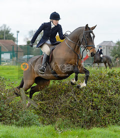 Fiona Applewhite jumping a hedge near the meet in Long Clawson