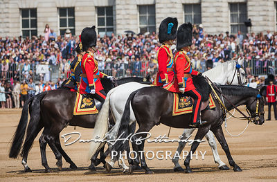 Trooping_the_Colour_8738