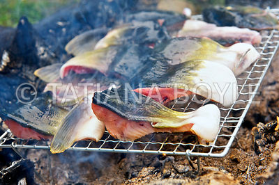 Chum salmon - Onchorhynchus keta on a grill