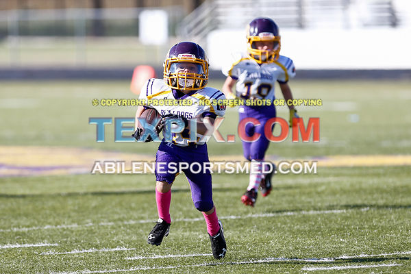 10-08-16_FB_MM_Wylie_Gold_v_Redskins-651
