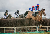 RAH Point to Point 28 Jan 18 photos