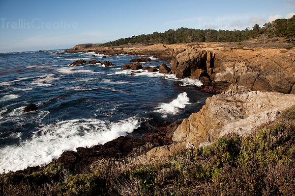 Coastline along 17-Mile Drive between Monterey and Carmel, California
