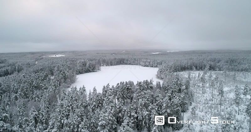 Snowy Winter Pond, Aerial, Tilt Down, Drone Shot, Over Snow Covered Trees, Towards a Frozen Pond, Surrounded by Scandianavian Woodlands, on a Moody, Overcast Evening, in Uusimaa, Finland