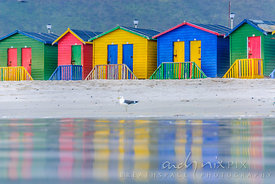 Colourful bathing huts reflected in the water on the beach