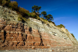 Rock strata, Penarth, Vale of Glmorgan, South Wales.