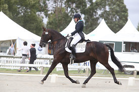 SI_Festival_of_Dressage_310115_Level_6_7_MFS_0640