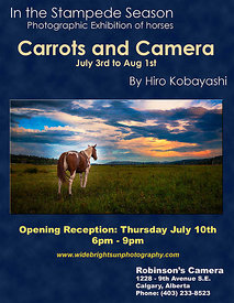 June 27 2014 - Solo gallery show, Carrots and Camera  picture