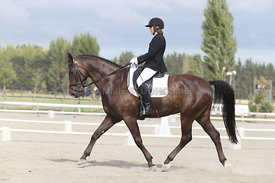 SI_Festival_of_Dressage_310115_Level_4_Champ_0579