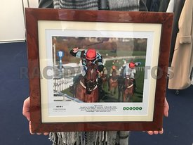 3:00 - The Unibet Greatwood Hurdle Race photos