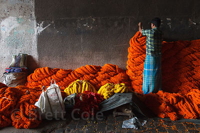 A worker hangs garlands at a stall in the Howrah Flower Market, reputed to be the largest in Asia. Kolkata, India.