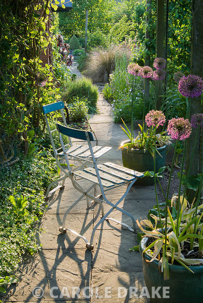 Garden chairs on path below pergola surrounded by pots of Allium 'Purple Sensation'. Ivy Croft, Leominster, Herefordshire, UK