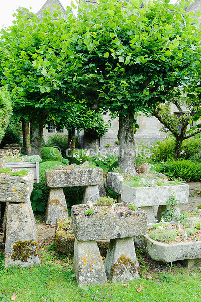The Troughery, a collection of stone troughs collected from around the farm, planted with alpines. Behind them are pleached limes in the Winter Garden. Rodmarton Manor, Rodmarton, Tetbury, Glos, UK