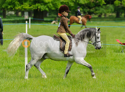 Class 19 - BSPS Heritage M&M RIHS Open First Ridden photos