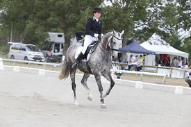 SI_Festival_of_Dressage_310115_Level_6_7_MFS_0837