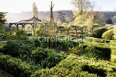 Box edged beds in the Tunnel Garden at Heale House, Middle Woodford, Wiltshire on a frosty April morning