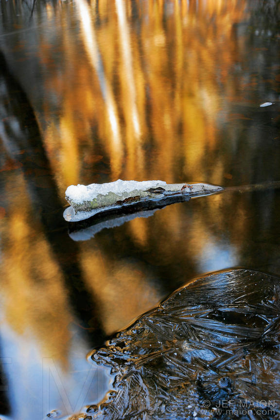 Ice on a stream and tree reflections
