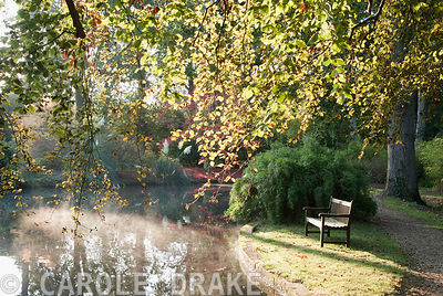 Early mist rising from the top pond. Exbury Gardens, Exbury, Hants, UK