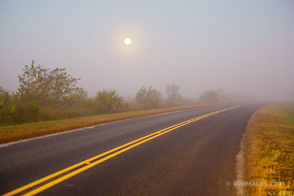 FULL MOON FOGGY EARLY MORNING ROAD IN EVERGLADES NATIONAL PARK FLORIDA