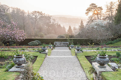 Dawn seen from the east terrace. Cotehele, Cornwall, UK