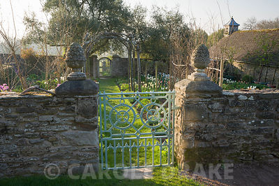 Gate into the cutting garden where a grass path leads beneath four trained whitebeams, Sorbus aria 'Lutescens', down towards a gate into the kitchen garden. Brilley Court Farm, Whitney-on-Wye, Herefordshire, UK