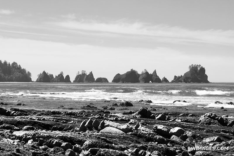 SHI SHI BEACH POINT OF THE ARCHES PACIFIC NORTHWEST OLYMPIC NATIONAL PARK BLACK AND WHITE