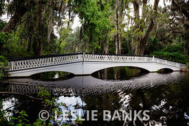 Footbridge at Magnolia Plantation