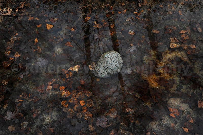 Pond, Reflections, and Rock