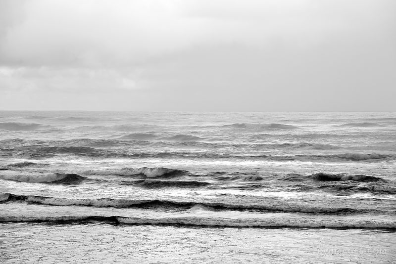 PACIFIC OCEAN WAVES OLYMPIC NATIONAL PARK WASHINGTON PACIFIC NORTHWEST BLACK AND WHITE