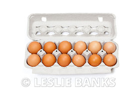 Carton of organic eggs