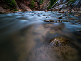 Zion_National_Park_2012_165