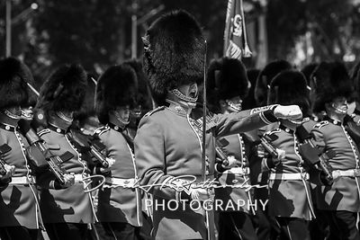 Trooping_the_Colour_8807
