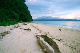 A beach in Solomon Islands