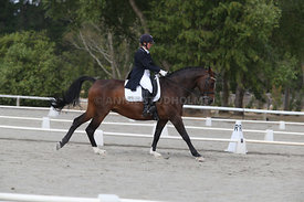 SI_Festival_of_Dressage_300115_Level_9_SICF_0472