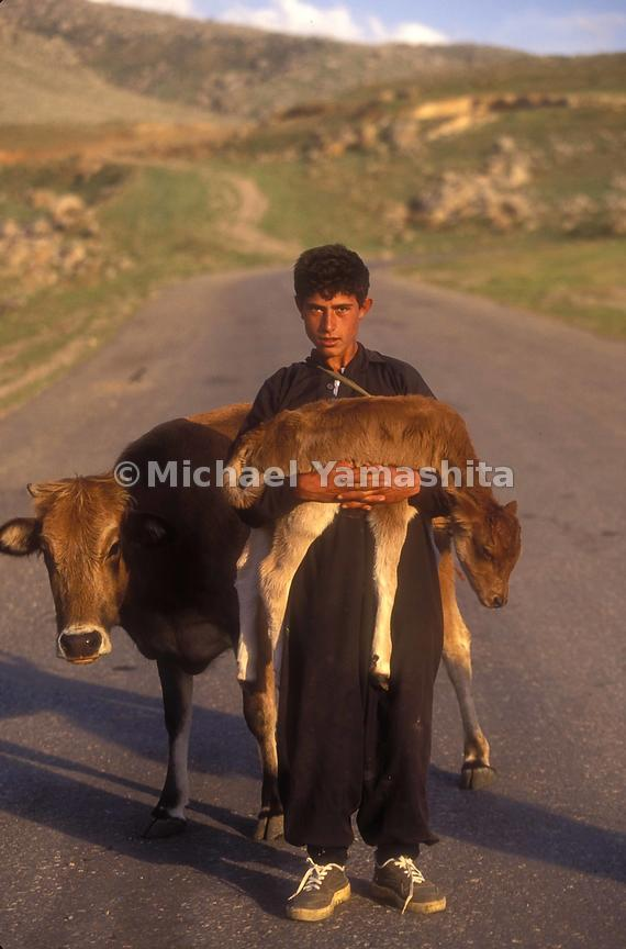A young Kurd shepherd holds up the newest addition to the flock.