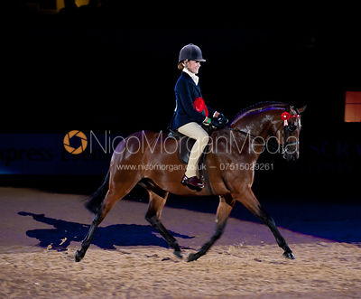 Riding Pony of The Year photos
