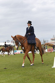 Canty_A_P_131114_Side_Saddle_1203