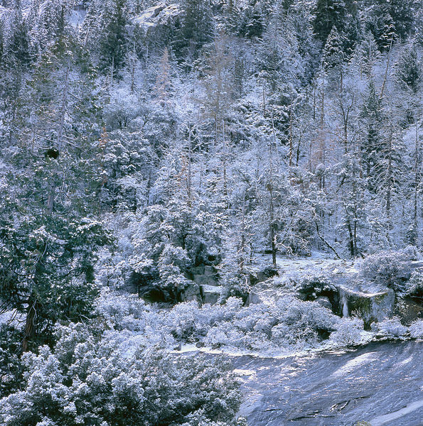 011-California_CA141018_Yosemite__Fresh_Snow_Vignette_04_Preview